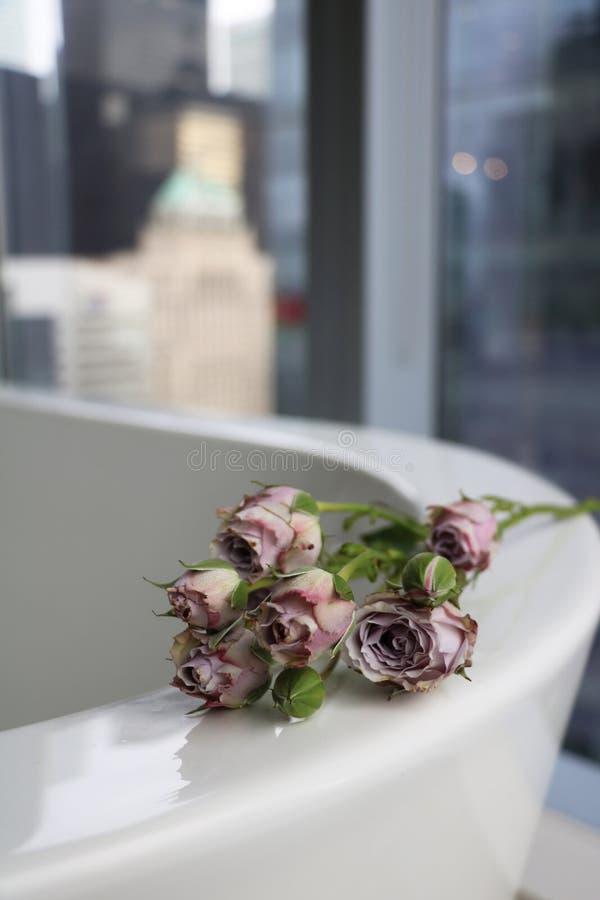 Kleine schmutzige Rosen auf einem Bad lizenzfreies stockbild