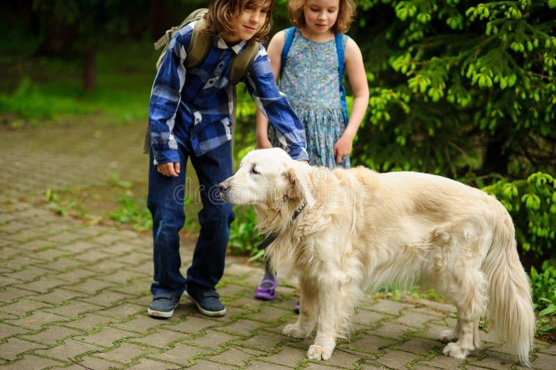 Kleine Schulkinder trafen auf dem Weg zur Schule einen großen Hund lizenzfreie stockfotos