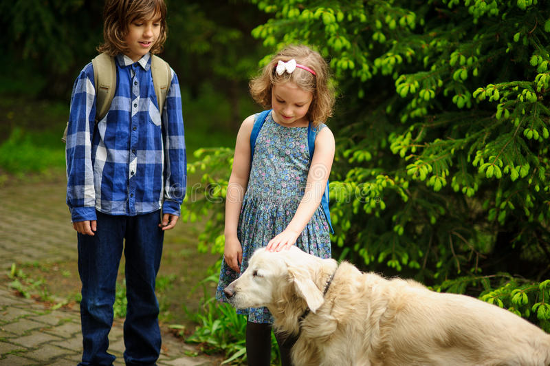 Kleine Schulkinder trafen auf dem Weg zur Schule einen großen Hund stockfoto