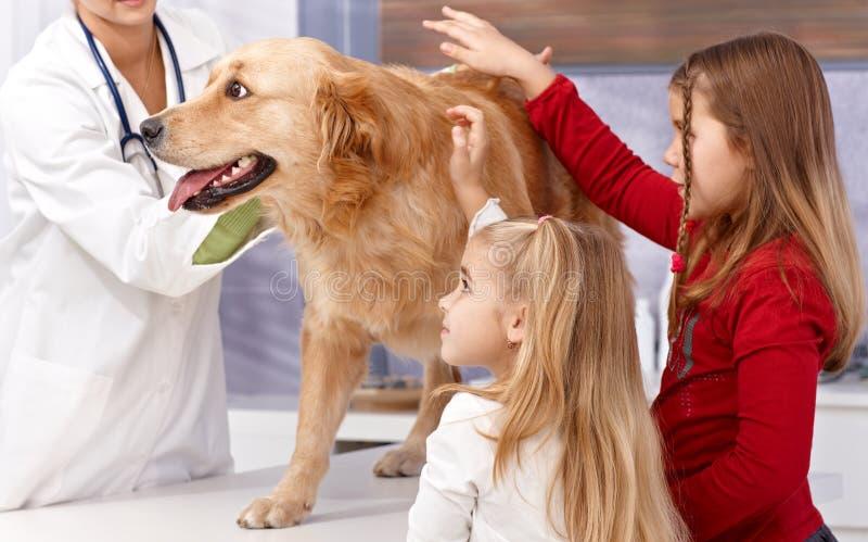 Kleine Schwestern und Hund am Tierarzt lizenzfreie stockbilder