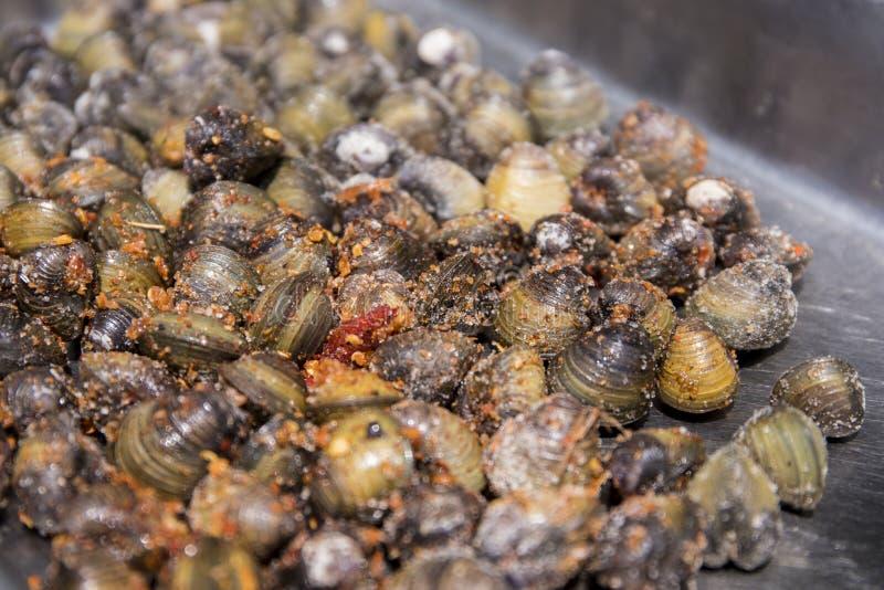 Kleine Seemuschel im Pfeffer Kambodschanisches Straßenlebensmittel Geschmackvolle würzige Meeresfrüchte essfertig lizenzfreie stockfotos