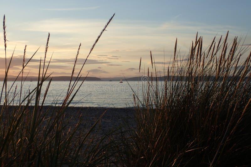 Kleine Segelboote auf dem Meer, auf den Sommern glättend, sahen Gedanken der Strandhafer an stockfotografie