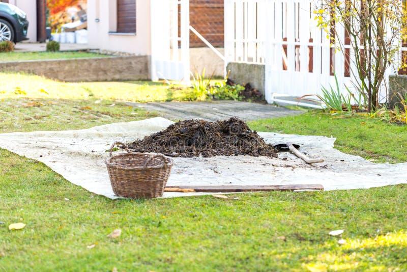Kleine stapel van gerotte mest op tarp in de vooryard Tuinschop en mand dichtbij hoop Concept de organische landbouw stock afbeeldingen