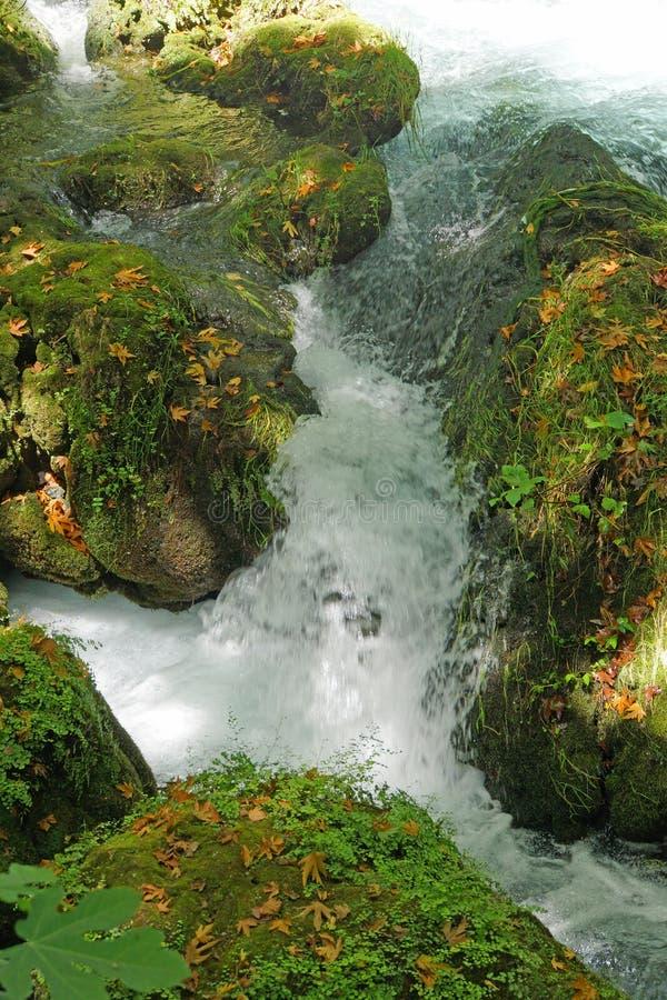 Kleine Ströme verbinden den Duden-Fluss lizenzfreie stockfotos