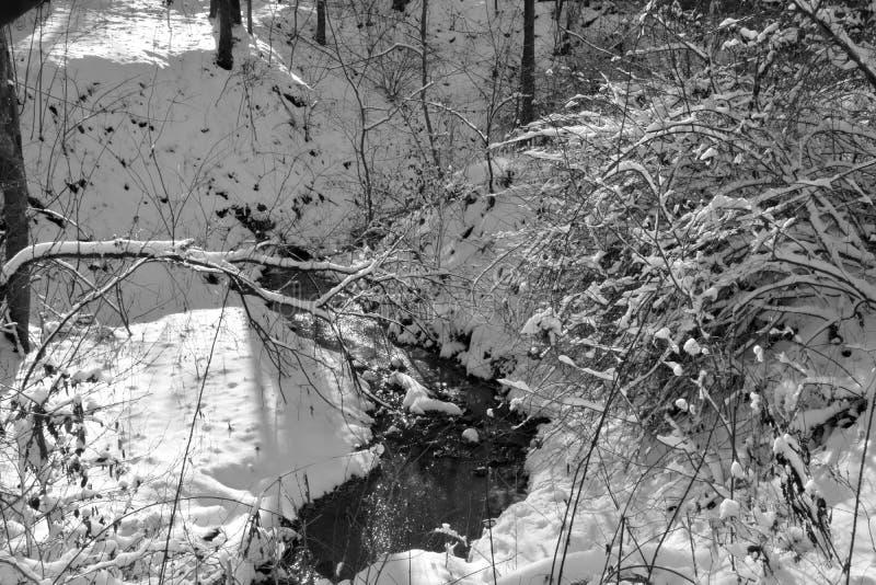 Kleine stroom in de wintersneeuw royalty-vrije stock afbeelding