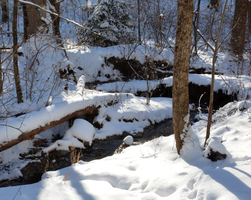 Kleine stroom in de wintersneeuw stock afbeelding