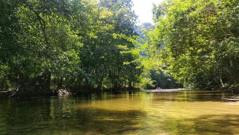Kleine stroom langs het bos met canoeing royalty-vrije stock fotografie