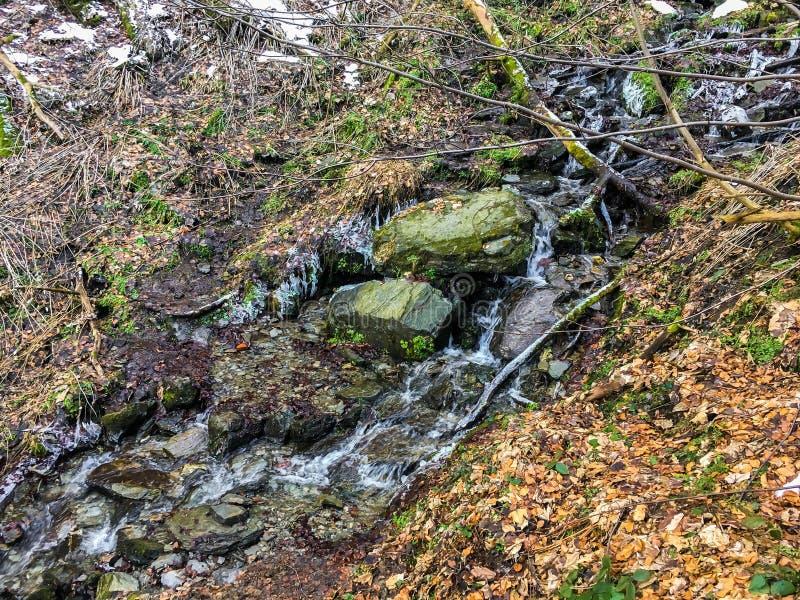 Kleine stroom met rotsen en bevroren waterijskegels maar nog het stromen in een boslandschap in wintertijd royalty-vrije stock afbeelding