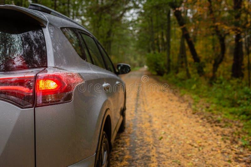Kleine SUV-auto in het midden van weg die met de gouden bladeren van de de herfstboom wordt behandeld stock foto