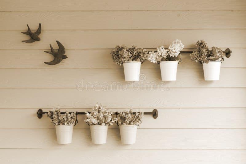 Kleine Topfblume an Bord der hölzernen Wand stockbilder