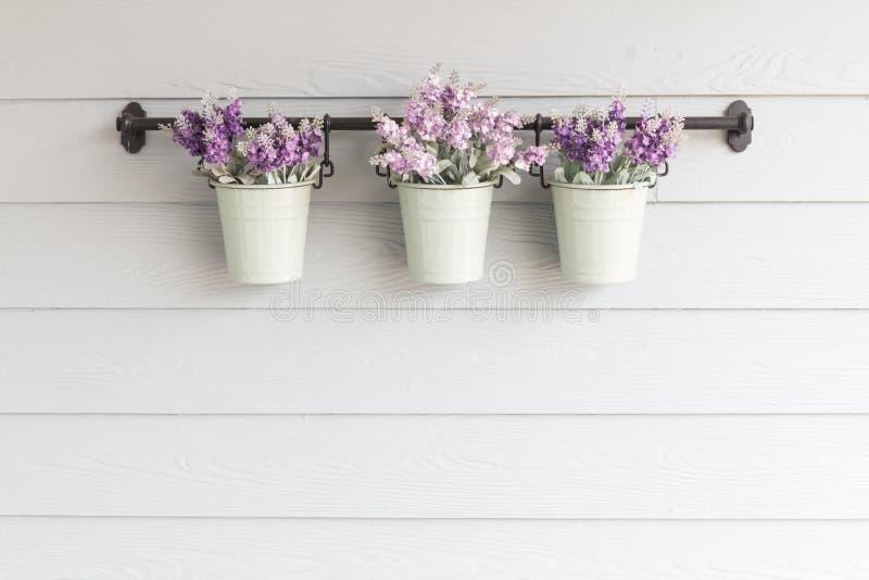 Kleine Topfblume an Bord der hölzernen Wand lizenzfreie stockbilder