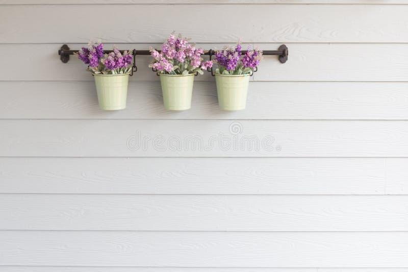 Kleine Topfblume an Bord der hölzernen Wand lizenzfreie stockfotos
