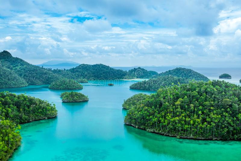 Kleine Tropeninseln mit Wald und bewölktem Himmel stockbilder
