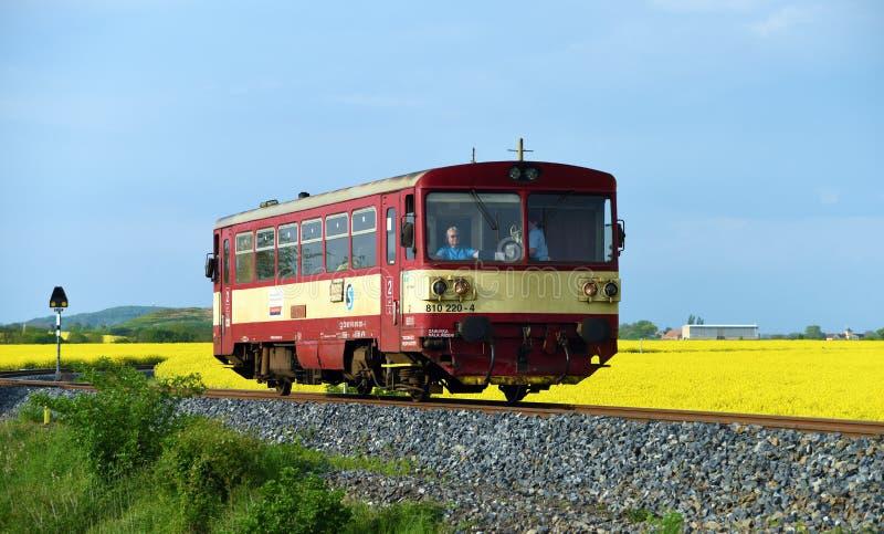 Kleine Tsjechische trein op Kanina-gebied stock afbeeldingen