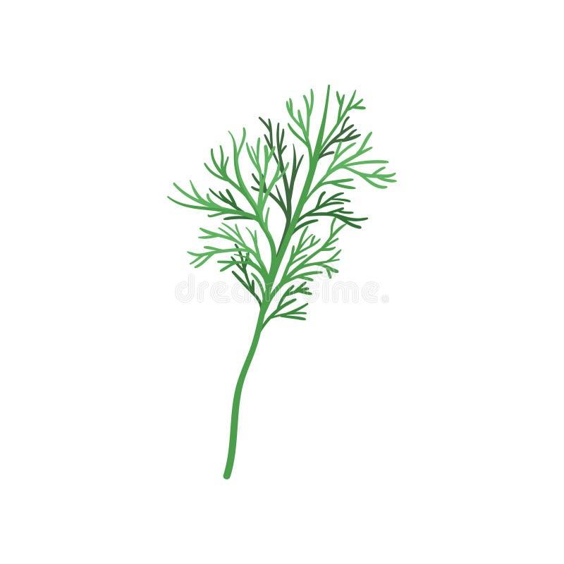 Kleine twijg van verse groene dille Aromatisch jaarlijks kruid Natuurlijk en gezond ingrediënt voor smaakstofschotels FFlatvector stock illustratie