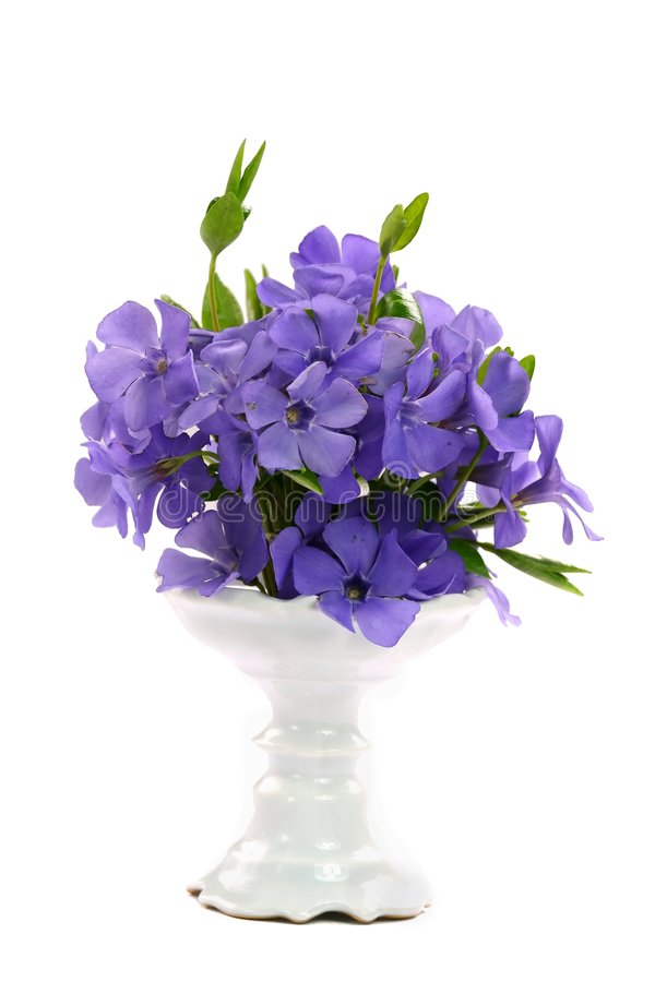 Kleine violette bloem royalty-vrije stock fotografie
