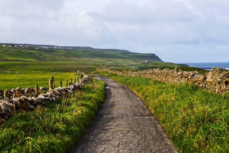 Kleine voetweg bij Klippen van Moher van Doolin, Ierland royalty-vrije stock foto's