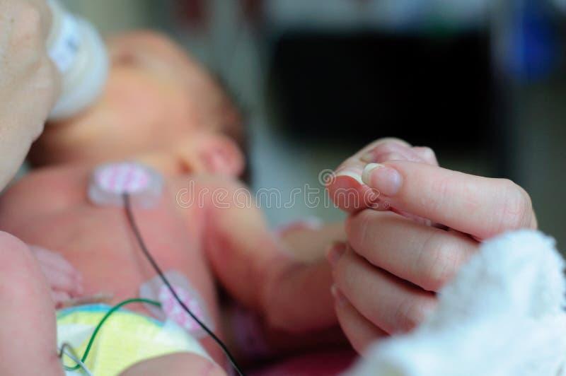 Kleine voorbarige baby in ICU stock afbeeldingen