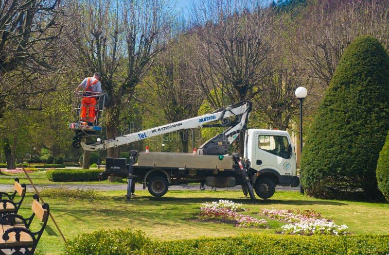 Kleine vrachtwagen met tuinarbeider in een lift in park royalty-vrije stock foto