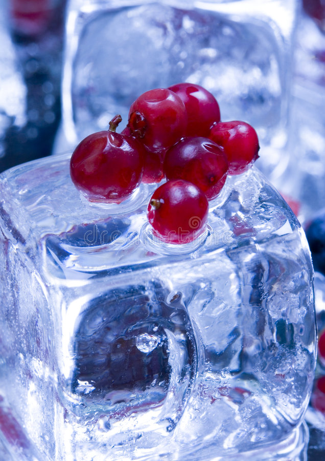 Kleine vruchten onder ijsblokjes royalty-vrije stock fotografie