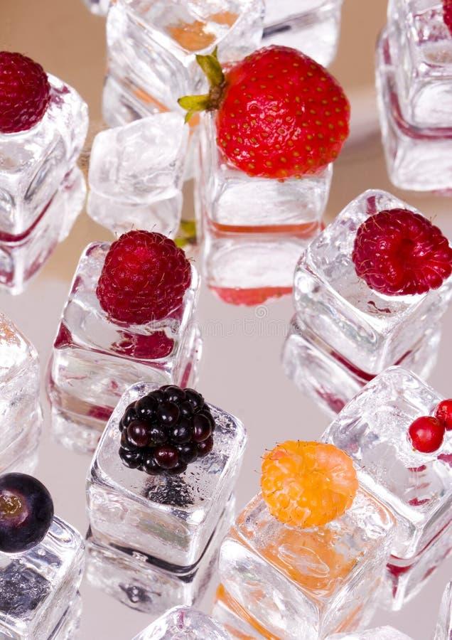 Kleine vruchten onder ijsblokjes royalty-vrije stock foto
