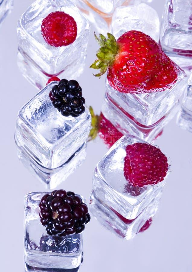 Kleine vruchten onder ijsblokjes royalty-vrije stock foto's