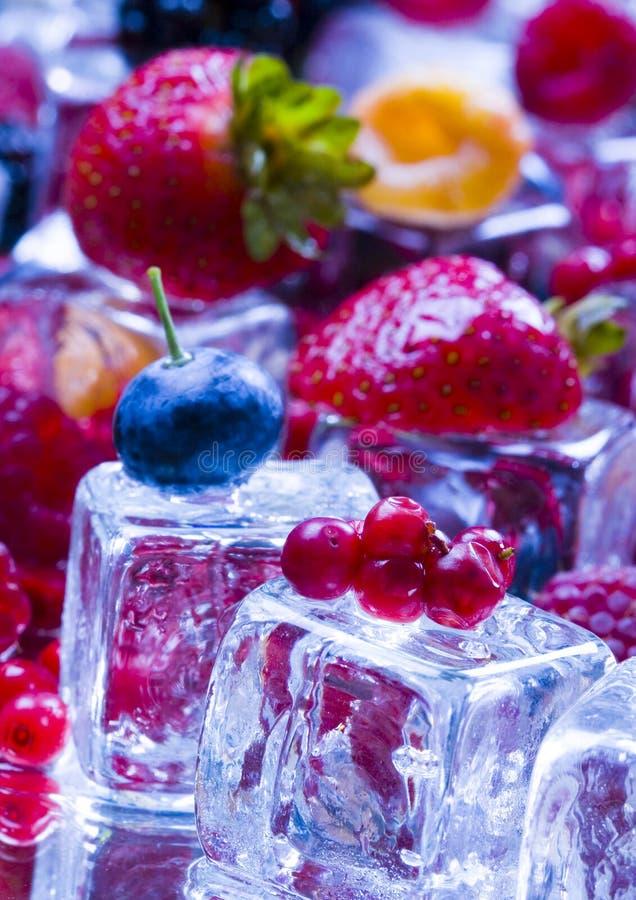Kleine vruchten onder ijsblokjes royalty-vrije stock afbeeldingen