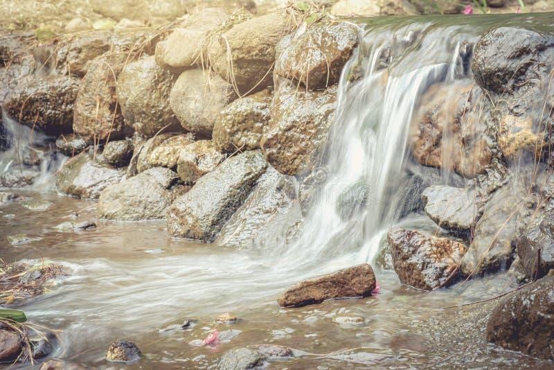 Kleine Wasserfälle in den Strömen, die den Wald ernähren lizenzfreies stockfoto