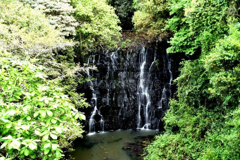 Kleine waterdaling bij Olifantsdaling van Shillong, Meghalaya, India royalty-vrije stock afbeeldingen