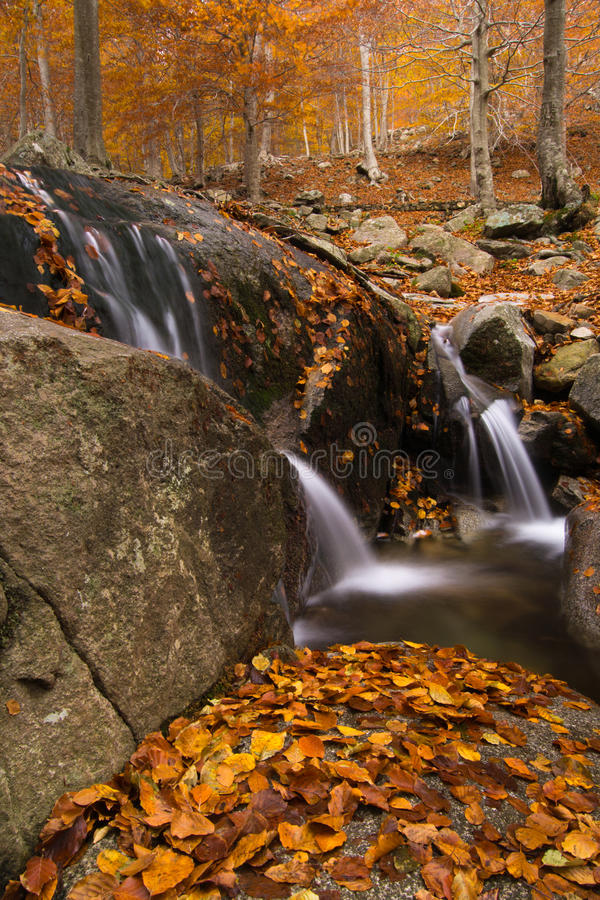 Kleine waterval in de herfst. Montseny, Spanje. stock fotografie