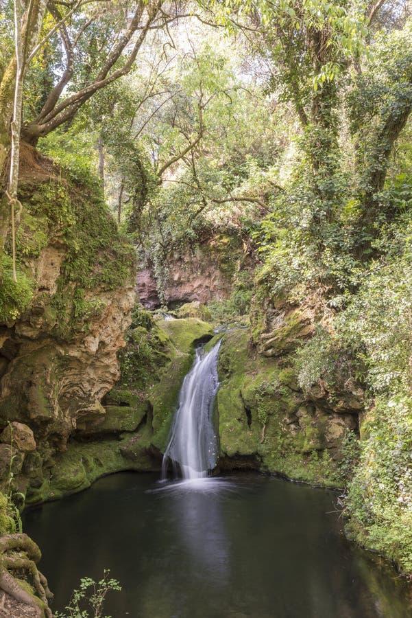 Kleine waterval die in een pool van water vallen royalty-vrije stock foto
