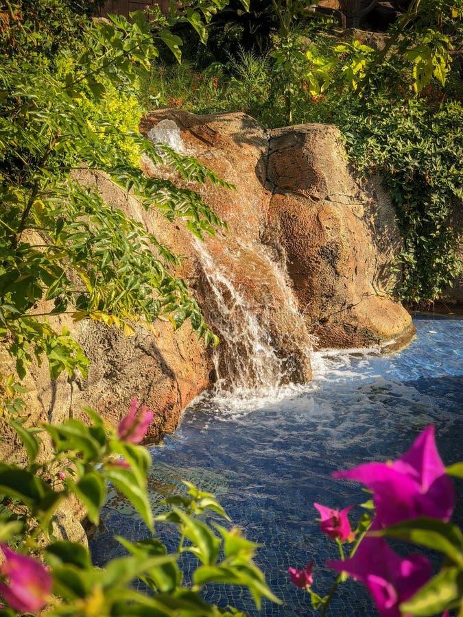 Kleine waterval in een park stock afbeelding