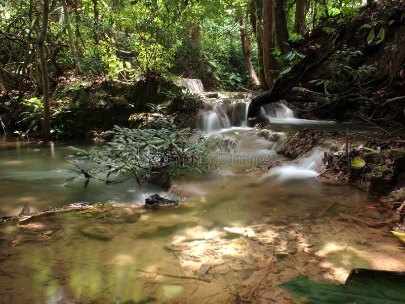 Kleine waterval en rivier in bos royalty-vrije stock afbeelding