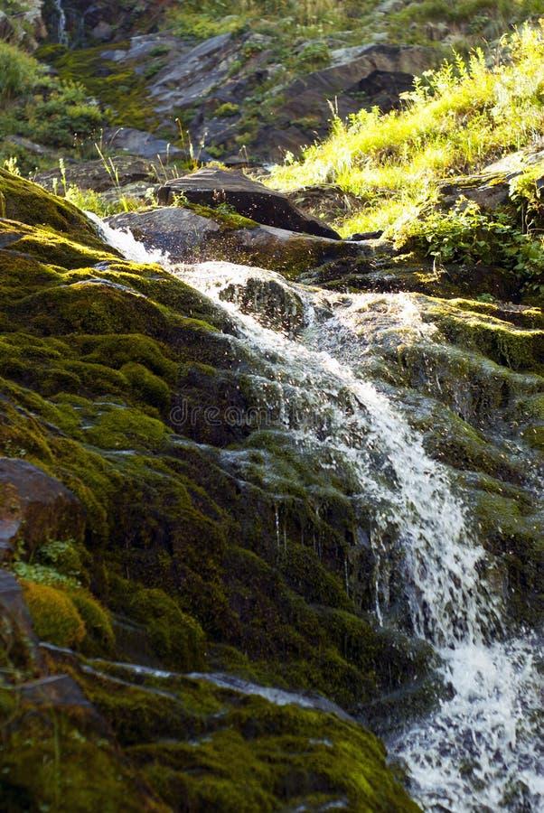 Kleine Waterval op een Bergstroom royalty-vrije stock foto