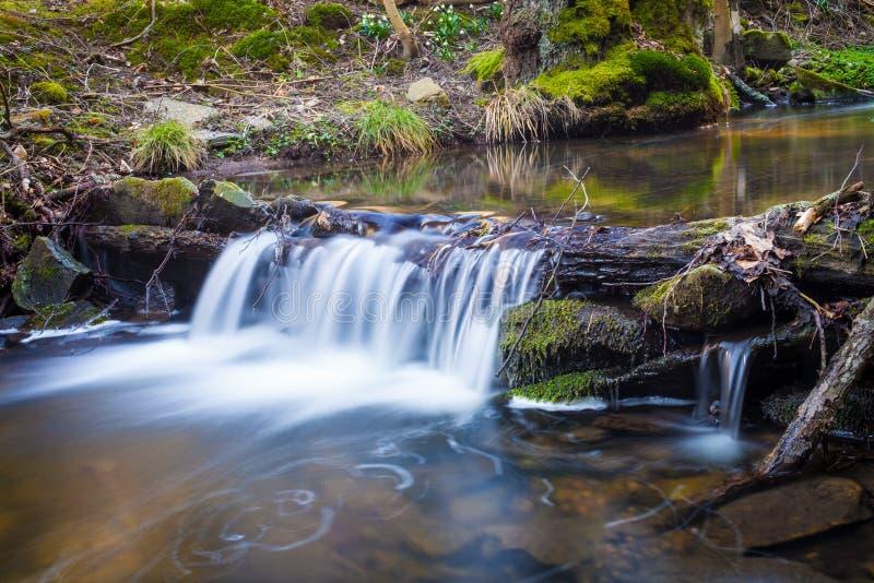 Kleine waterval op kreek die over de rotsen en het hout stromen stock fotografie