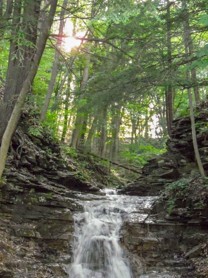Download Kleine Watervallen Bij Het Park Van De Staat Stock Afbeelding - Afbeelding bestaande uit staat, waterval: 107702495