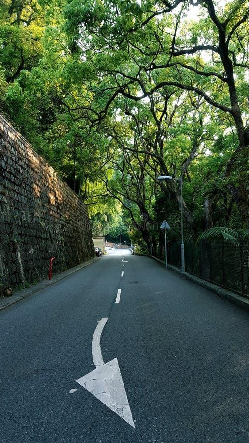 kleine weg 2 stock afbeelding