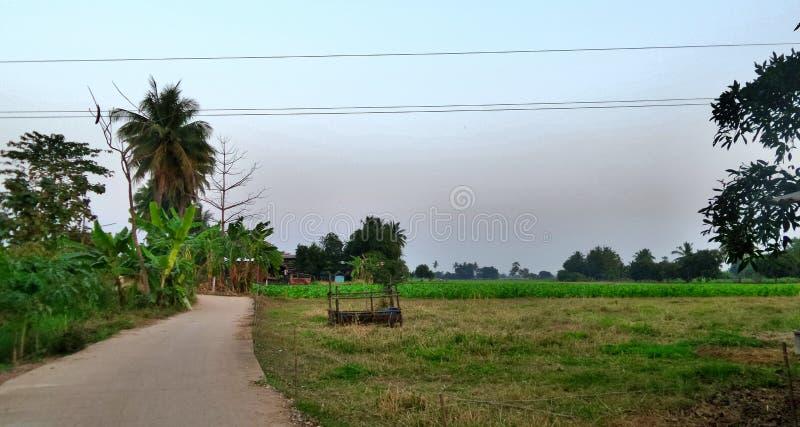 Kleine weg in het dorp royalty-vrije stock fotografie