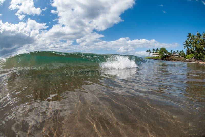Kleine Welle in Maui, Hawaii stockbilder