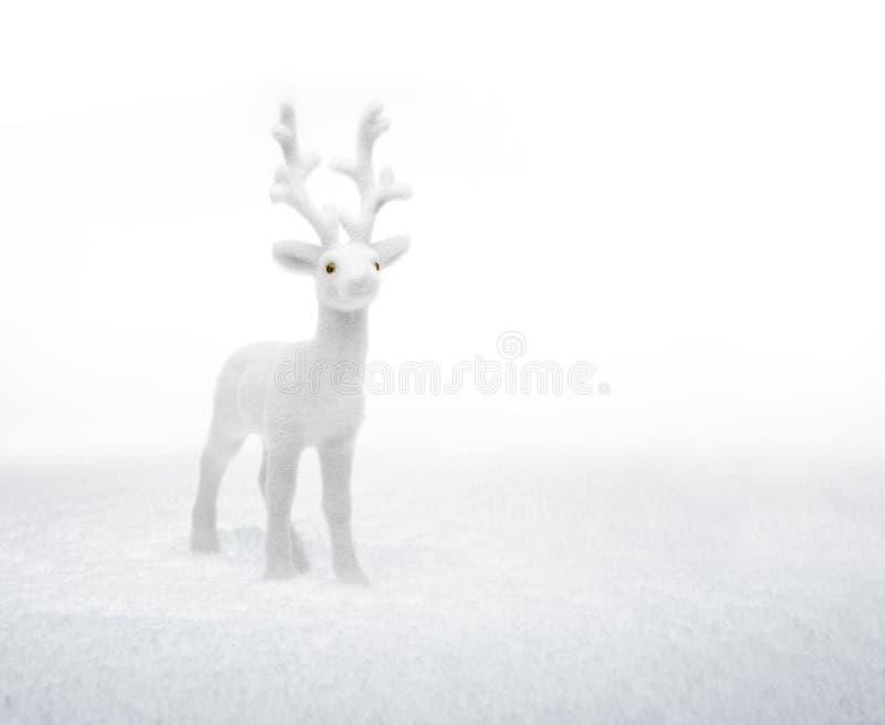 Kleine witte herten die zich in de sneeuw bevinden royalty-vrije stock afbeelding