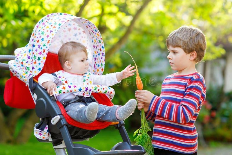 Kleiner blonder Kinderjunge, der dem kleinen Schwesterchen eine Karotte gibt Glückliche Geschwister, die gesunden Snack essen Bab stockbild