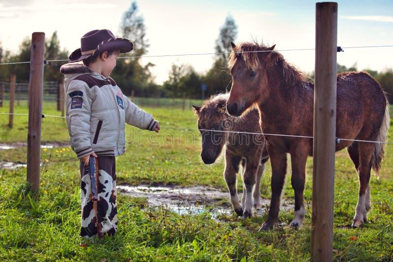 Kleiner Cowboy und Pony stockbild