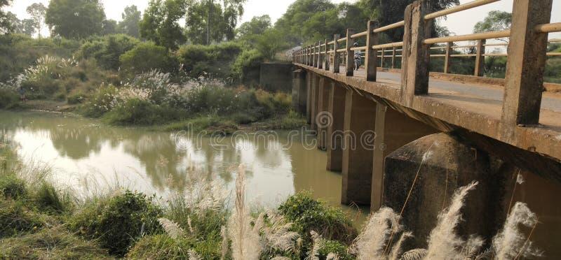 Kleiner Fluss und Brücke Indien stockbilder