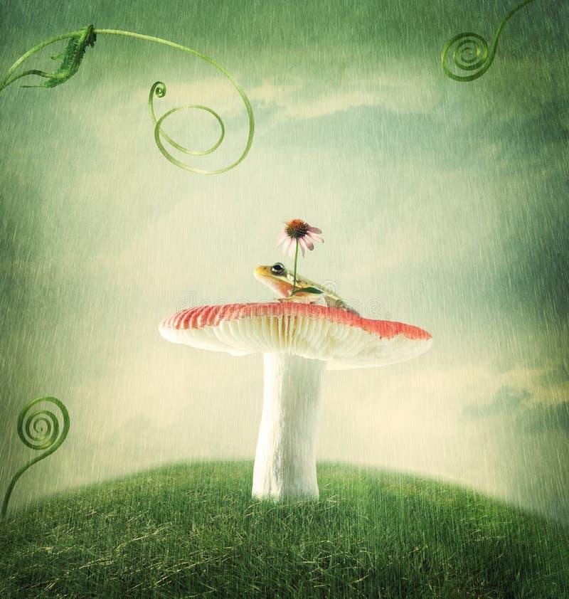 Kleiner Frosch auf dem magischen Pilz stockbild