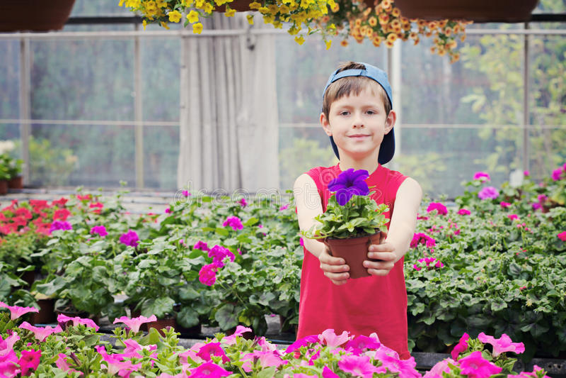 Kleiner Gärtner lizenzfreies stockfoto