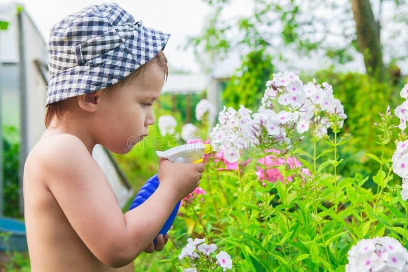 Kleiner Gärtner stockbilder