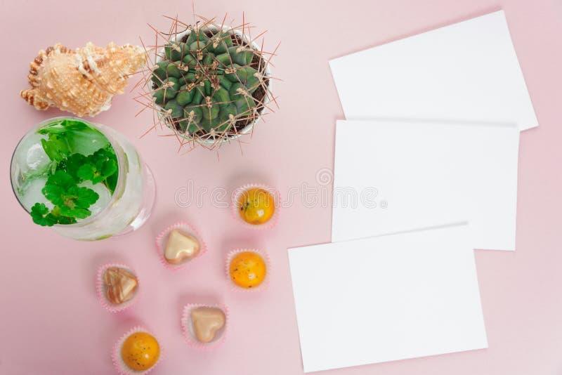 Kleiner grüner Kaktus der Draufsicht, kaltes Cocktail, Fotopapier und Bonbons auf Rosa und blauem Hintergrund mit Kopienraum stockbild