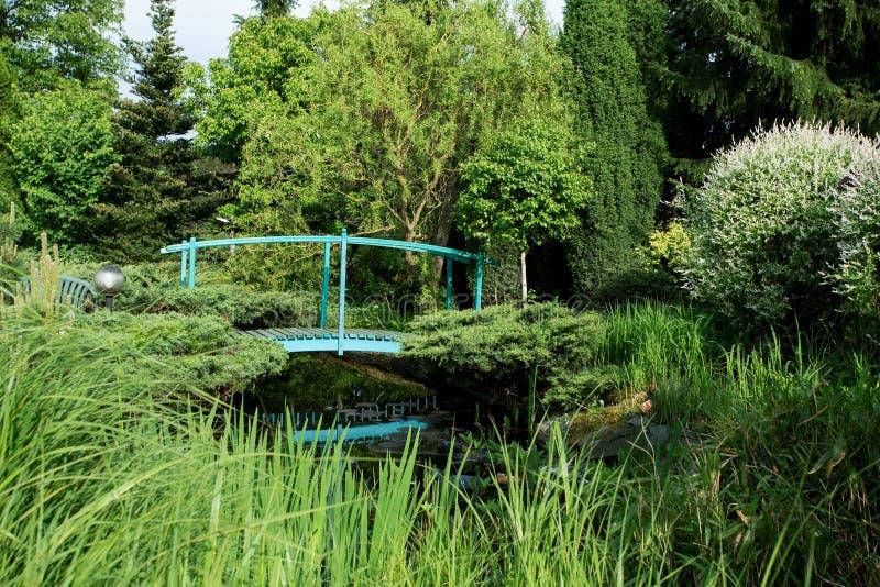 Kleiner grüner Steg über einem Teich stockfoto