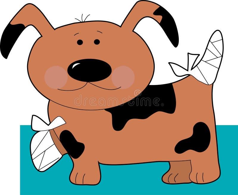 Kleiner Hund in den Verbänden lizenzfreie abbildung