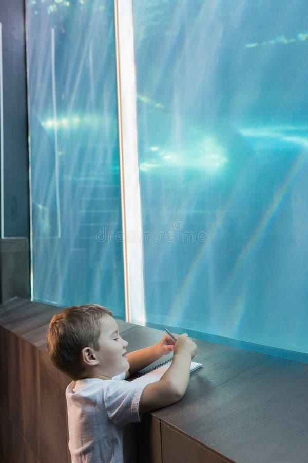 Kleiner Junge, der Aquarium betrachtet stockbild